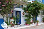 Apollonas Naxos - Cyclades Greece- nr 18 - Photo GreeceGuide.co.uk