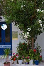 Apollonas Naxos - Cyclades Greece- nr 21 - Photo GreeceGuide.co.uk