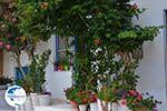 Apollonas Naxos - Cyclades Greece- nr 22 - Photo GreeceGuide.co.uk