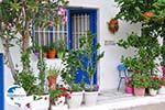Apollonas Naxos - Cyclades Greece- nr 31 - Photo GreeceGuide.co.uk