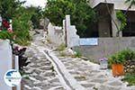 Apollonas Naxos - Cyclades Greece- nr 46 - Photo GreeceGuide.co.uk
