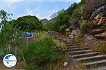 Apollonas Naxos - Cyclades Greece- nr 69 - Photo GreeceGuide.co.uk