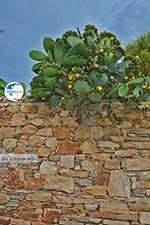 Kato Sangri Naxos - Cyclades Greece- nr 23 - Photo GreeceGuide.co.uk