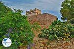 Kato Sangri Naxos - Cyclades Greece- nr 31 - Photo GreeceGuide.co.uk