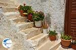 Naxos town - Cyclades Greece - nr 40 - Photo GreeceGuide.co.uk