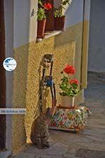 Naxos town - Cyclades Greece - nr 299 - Photo GreeceGuide.co.uk