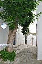 Potamia Naxos - Cyclades Greece - nr 35 - Photo GreeceGuide.co.uk
