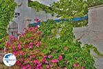 Potamia Naxos - Cyclades Greece - nr 59 - Photo GreeceGuide.co.uk