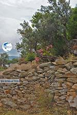 Potamia Naxos - Cyclades Greece - nr 104 - Photo GreeceGuide.co.uk