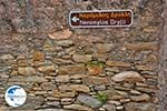 Potamia Naxos - Cyclades Greece - nr 105 - Photo GreeceGuide.co.uk