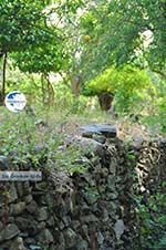 Potamia Naxos - Cyclades Greece - nr 117 - Photo GreeceGuide.co.uk