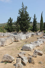 Nemea Corinth | Peloponnese | Greece Photo 19 - Photo Marcel Fens