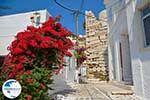Parikia Paros - Cyclades -  Photo 53 - Photo GreeceGuide.co.uk