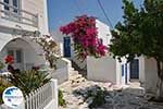Parikia Paros - Cyclades -  Photo 71 - Photo GreeceGuide.co.uk