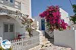 Parikia Paros - Cyclades -  Photo 72 - Photo GreeceGuide.co.uk