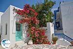 Parikia Paros - Cyclades -  Photo 73 - Photo GreeceGuide.co.uk