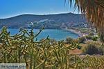 Kampos - Island of Patmos - Greece  Photo 31 - Photo GreeceGuide.co.uk