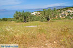 Koilada (Kilada)   Argolida (Argolis) Peloponnese   Greece Photo 25 - Photo GreeceGuide.co.uk