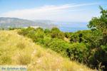 Near old Epidavros | Argolida (Argolis) Peloponnese | Greece Photo 2 - Photo GreeceGuide.co.uk