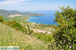 Near old Epidavros | Argolida (Argolis) Peloponnese | Greece Photo 10 - Photo GreeceGuide.co.uk