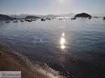 Tolo (Tolon) Argolida (Argolis) - Peloponnese Photo 27 - Photo GreeceGuide.co.uk