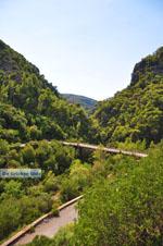 nature near Mani | Messenia Peloponnese | Greece  1 - Photo GreeceGuide.co.uk