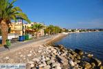 Petalidi   Messenia Peloponnese   Greece  4 - Photo GreeceGuide.co.uk