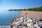 Agios Andreas | Messenia Peloponnese | Greece  13 - Photo GreeceGuide.co.uk