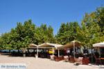 Pylos (Navarino)   Messenia Peloponnese   Photo 30 - Photo GreeceGuide.co.uk