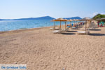 Gialova | Messenia Peloponnese | Photo 8 - Photo GreeceGuide.co.uk