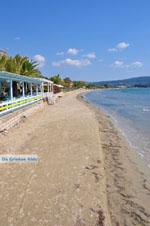 Gialova | Messenia Peloponnese | Photo 11 - Photo GreeceGuide.co.uk