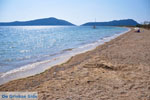 Gialova | Messenia Peloponnese | Photo 15 - Photo GreeceGuide.co.uk