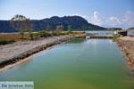 Gialova | Messenia Peloponnese | Photo 19 - Photo GreeceGuide.co.uk