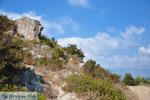Near Gialova and Voidokilia   Messenia Peloponnese   Photo 7 - Photo GreeceGuide.co.uk