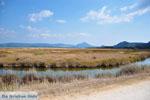 Near Gialova and Voidokilia | Messenia Peloponnese | Photo 17 - Photo GreeceGuide.co.uk