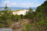 Near Gialova and Voidokilia | Messenia Peloponnese | Photo 20 - Photo GreeceGuide.co.uk