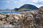 Near Gialova and Voidokilia | Messenia Peloponnese | Photo 41 - Photo GreeceGuide.co.uk