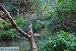 Waterfalls Polilimnio | Messenia Peloponnese | Photo 2 - Photo GreeceGuide.co.uk