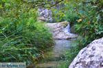 Waterfalls Polilimnio   Messenia Peloponnese   Photo 13 - Photo GreeceGuide.co.uk