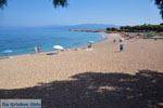 Kyparissia | Messenia Peloponnese | Photo 7 - Photo GreeceGuide.co.uk