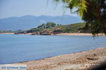 Kyparissia   Messenia Peloponnese   Photo 13 - Photo GreeceGuide.co.uk