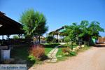 Sani near Kyparissia | Messenia Peloponnese | 2 - Photo GreeceGuide.co.uk