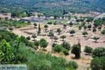 Ancient Messini Ithomi | Messenia Peloponnese | Photo 4 - Photo GreeceGuide.co.uk