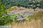 Ancient Messini Ithomi | Messenia Peloponnese | Photo 17 - Photo GreeceGuide.co.uk