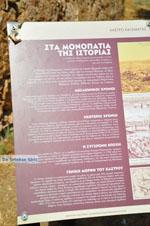 Kalamata | Messenia Peloponnese | Greece  30 - Photo GreeceGuide.co.uk