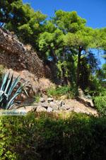 Kalamata | Messenia Peloponnese | Greece  41 - Photo GreeceGuide.co.uk