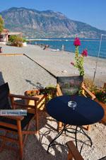 Kalamata | Messenia Peloponnese | Greece  67 - Photo GreeceGuide.co.uk