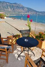 Kalamata | Messenia Peloponnese | Greece  68 - Photo GreeceGuide.co.uk