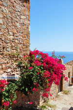 Monemvasia (Monemvassia) | Lakonia Peloponnese | Greece  101 - Photo GreeceGuide.co.uk