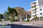 Kalamata | Messenia Peloponnese | Greece  92 - Photo GreeceGuide.co.uk